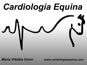 Logo Cardiología Equina