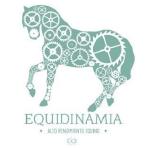 fun_con_equidinamia