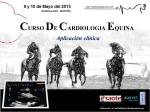Curso Cardiología Equina María Villalba