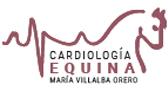 Cardiología Equina